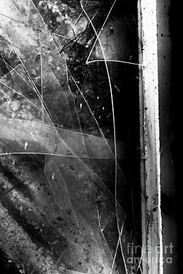 Crushed Photographs