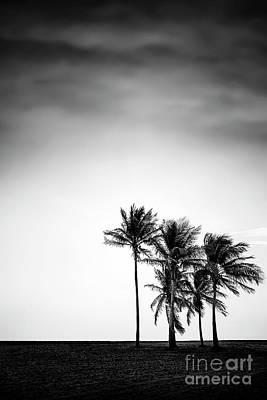 Designs Similar to Dark Winds Rising