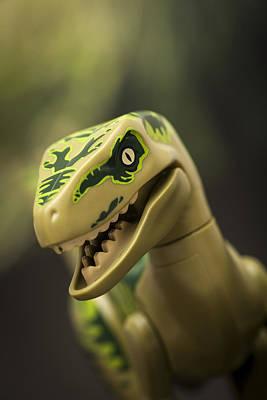 Dinosaur Park Photographs