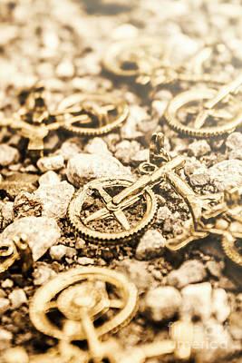 Life Cycle Photographs