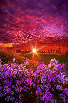 Designs Similar to The Everlasting by Phil Koch
