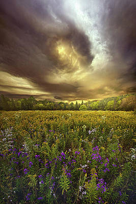 Designs Similar to Autumn Falls 1 by Phil Koch