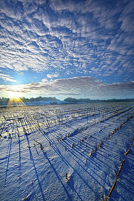 Designs Similar to Quiet Time by Phil Koch