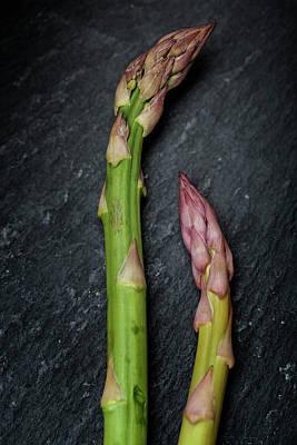 Designs Similar to Fresh Green Asparagus