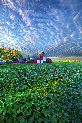 Designs Similar to A Life Of Purpose by Phil Koch