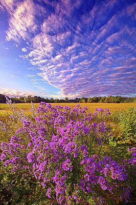 Designs Similar to Adorned In Scarlet by Phil Koch