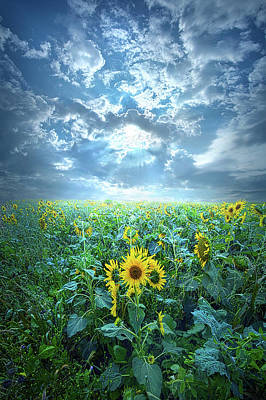 Designs Similar to Always Have Faith by Phil Koch