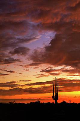 Designs Similar to Amazing Arizona Skies