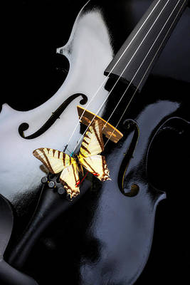 Designs Similar to Black Vilin And White Butterfly