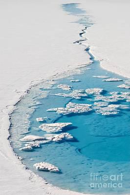 Arctic Prints