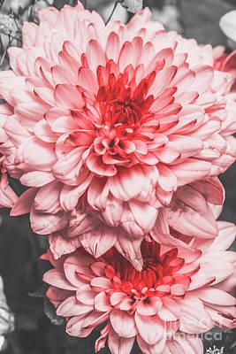 Designs Similar to Flower Buds