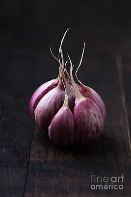 Designs Similar to Garlic On Vintage Wooden Table