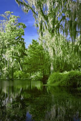 Designs Similar to Magnolia Plantation In Green