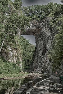 Designs Similar to Natural Park In Virginia