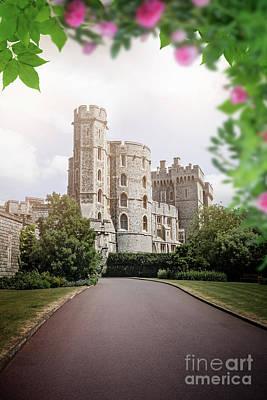 Windsor Art