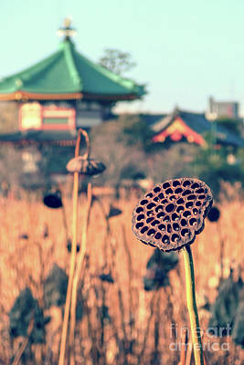 Designs Similar to Shinobazu Lake In Tokyo