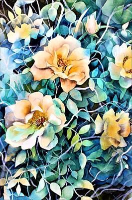 Rose Garden Photographs
