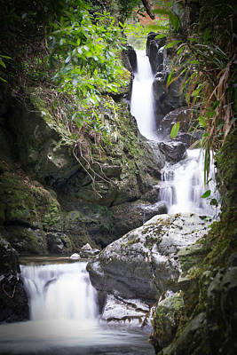 Photograph - Tollymore waterfall by Edward Benton