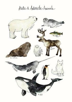Penguins Wall Art