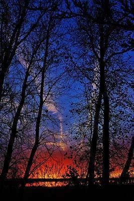Photograph - Fall Sunset thru the Cottonwods in Kansas by Greg Rud