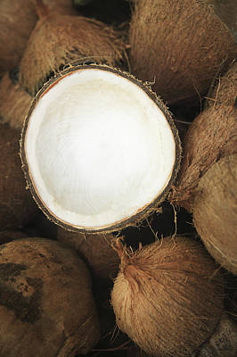 Coconut Art Prints
