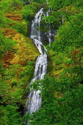 Photograph - Munson Creek Falls by Larry Kjorvestad