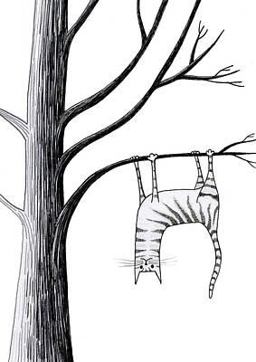 Feline Drawings