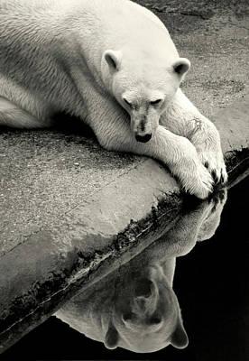 Meditative Photographs