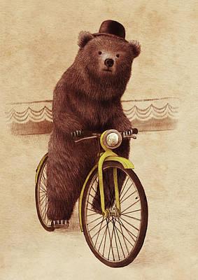 Bear Drawings