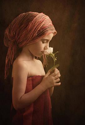 Desert Rose Photographs