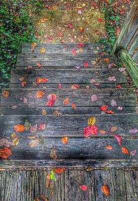 Designs Similar to Fall Morning by Marianna Mills