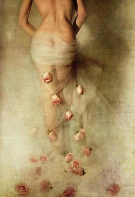 Designs Similar to My Rose Garden Ll by Miriana