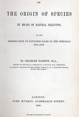 Titlepage Prints