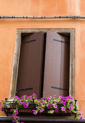 Designs Similar to Brown Window by Iris Richardson