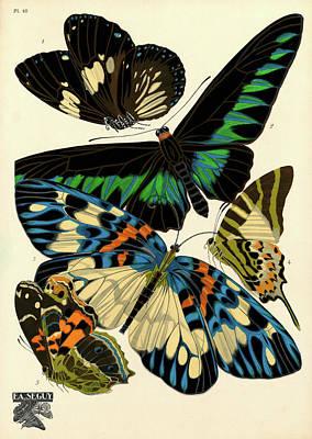 Designs Similar to Butterflies, Plate-10