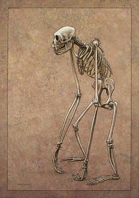 Animal Death Prints