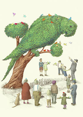 Green Parrot Drawings