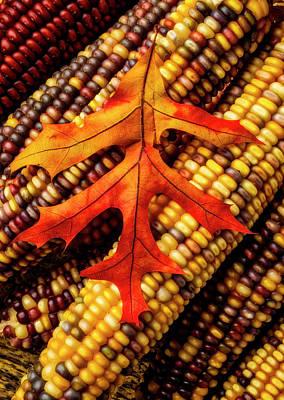 Designs Similar to Autumn Leaf On Indian Corn