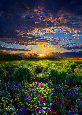 Designs Similar to Let It Be by Phil Koch