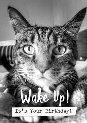 Wake Up Photographs