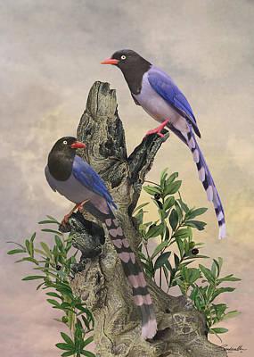 Designs Similar to Taiwan Blue Magpies