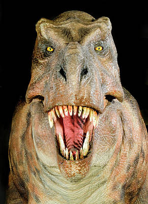 Designs Similar to Tyrannosaurus Rex Model