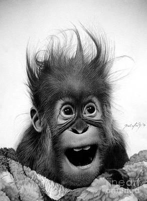 Baby Orangutan Drawings