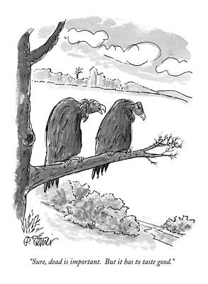 Dead Tree Drawings