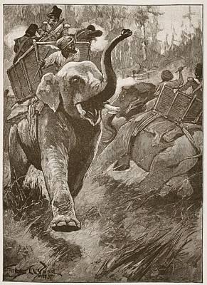 Napal Prints