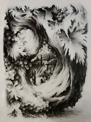 Vineyard Landscape Drawings Prints
