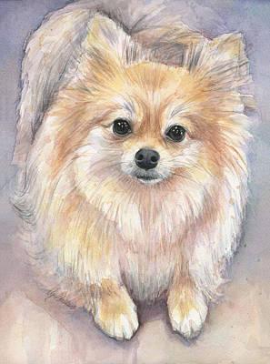 Pomeranian Paintings