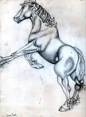 Albrecht Drawings Original Artwork