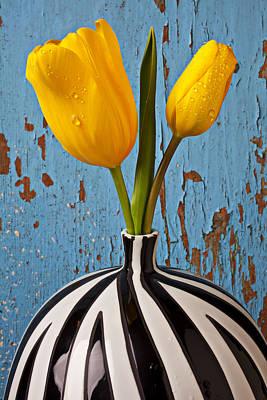Blue Floral Photographs