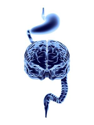 Designs Similar to Enteric Nervous System